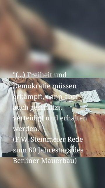 """""""(...) Freiheit und Demokratie müssen erkämpft, dann aber auch geschützt, verteidigt und erhalten werden."""" (F.W. Steinmeier Rede zum 60 Jahrestags des Berliner Mauerbau)"""