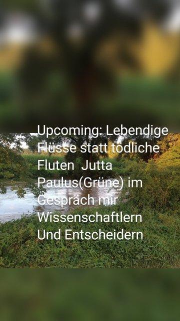 Upcoming: Lebendige Flüsse statt tödliche Fluten Jutta Paulus(Grüne) im Gespräch mir Wissenschaftlern Und Entscheidern